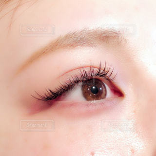 eyeの写真・画像素材[1615613]