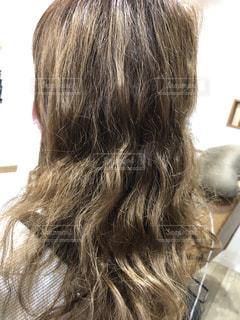 髪の毛の写真・画像素材[3376864]