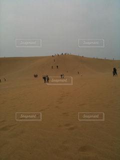 鳥取砂丘の写真・画像素材[1451295]