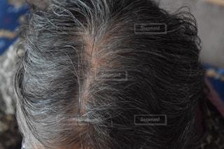 70代の頭皮の写真・画像素材[1684403]