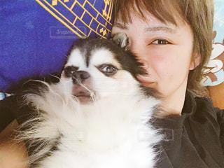 犬とわたしの写真・画像素材[1609287]