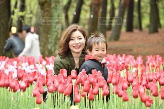 チューリップ畑で息子との写真・画像素材[2137341]