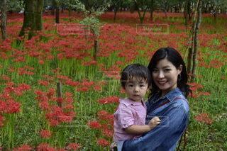 彼岸花と親子の写真・画像素材[2579634]