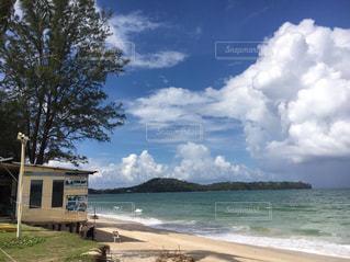 青空と緑がまぶしい砂浜のビーチの写真・画像素材[1462842]