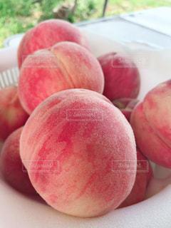 桃の季節の写真・画像素材[1451474]
