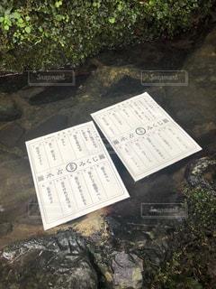 夏の京都デートの写真・画像素材[1695357]