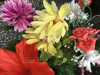 花たちの写真・画像素材[1454364]