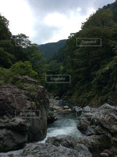 中山の滝の写真・画像素材[1535463]