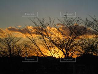 山あいの夕暮れの写真・画像素材[1613448]