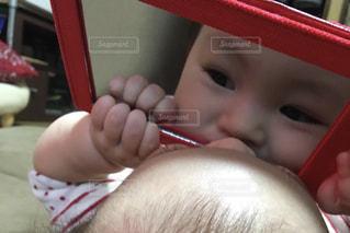 鏡だいすきの写真・画像素材[1505978]