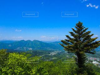 自然を感じられる風景の写真・画像素材[1451948]