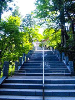 御岳神社まで続く階段の写真・画像素材[1451956]