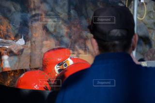 燃やすだるまを見つめる男性の写真・画像素材[1453297]