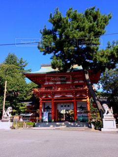 今宮神社の写真・画像素材[1495498]