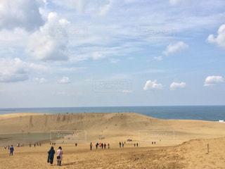 砂丘の写真・画像素材[1495610]