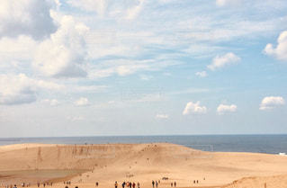 砂丘の写真・画像素材[1495636]