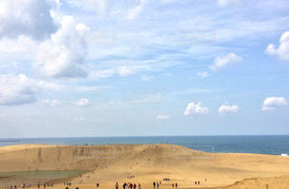 砂丘の写真・画像素材[1495660]