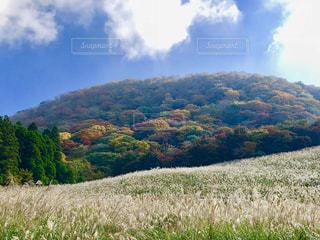 秋の高原の写真・画像素材[1580705]