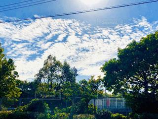 青空と雲の写真・画像素材[1634736]