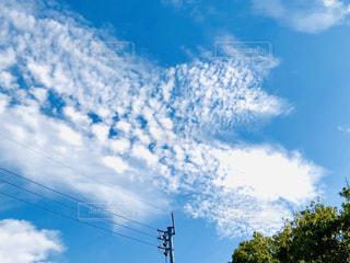 秋の青空の写真・画像素材[1634743]