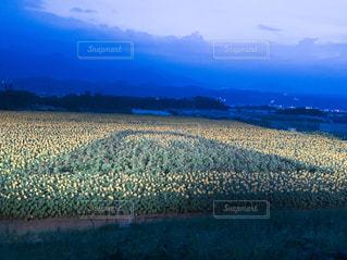 絵文字ひまわり『富士山』の写真・画像素材[2356760]
