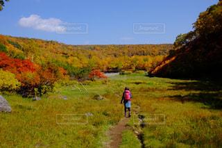 秋の写真・画像素材[232373]