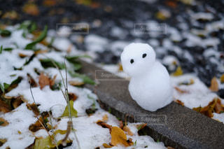 冬 - No.241123