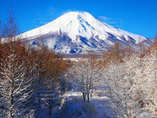 晴天冬富士。の写真・画像素材[1463243]