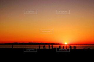 朝陽を浴びて。の写真・画像素材[1463319]