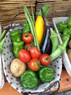 カラフルなお野菜たちの写真・画像素材[1456900]