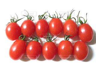 並んだミニトマトたちの写真・画像素材[1457005]