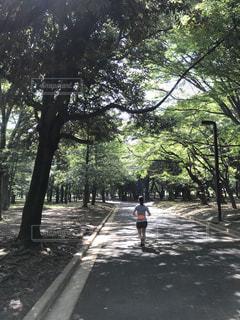 ジョギングの写真・画像素材[1468708]