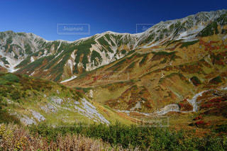 立山室堂平の鮮やかな紅葉の写真・画像素材[1608903]
