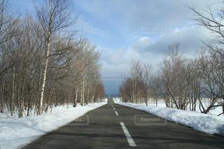 北海道網走の能取岬へ一直線の写真・画像素材[1664184]