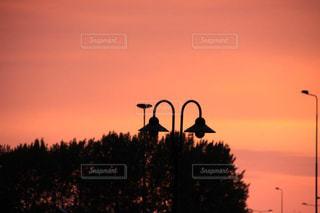 アムステルダムの夕景とライトシルエットの写真・画像素材[1694175]