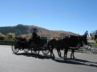 テカポ湖に出現した馬車の写真・画像素材[1785477]