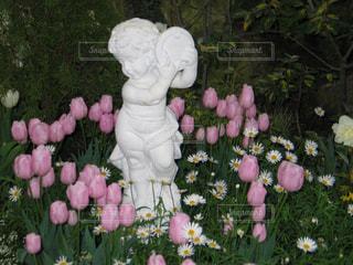 ピンクのチューリップに囲まれた天使の写真・画像素材[1802039]