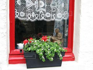 窓辺のシンプルで可愛い鉢植えがお洒落なブルージュの写真・画像素材[2087282]