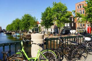 魅力的な自転車王国オランダの新緑と自転車風景の写真・画像素材[2098081]