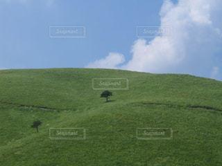 夏の車山高原の美しい風景の写真・画像素材[2151901]