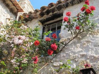 石造りの建物に赤いバラが映えるエズの美しい景色の写真・画像素材[2171132]