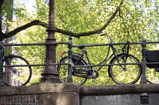 緑あふれる自転車王国オランダの日常風景の写真・画像素材[2183363]