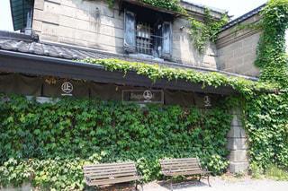 風情ある小樽の緑に覆われた街の風景の写真・画像素材[2288750]