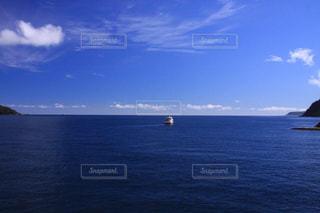 青空と美しいミルフォードサウンドに魅せられての写真・画像素材[2311417]