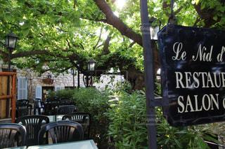 新緑が美しいお洒落なオープンカフェの写真・画像素材[2311960]
