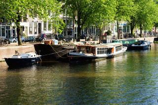 心落ち着く美しい緑とアムステルダムの運河風景の写真・画像素材[2350029]