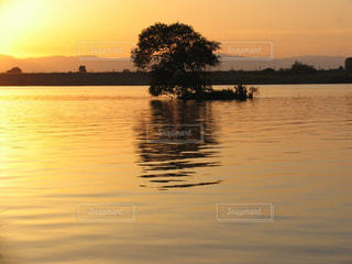風情ある琵琶湖の夕暮れの写真・画像素材[2435698]