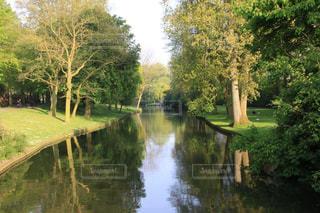 ブルージュの緑豊かな風景の写真・画像素材[3104078]