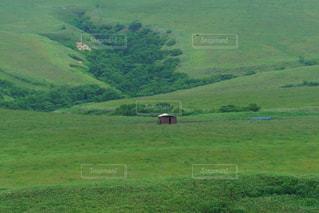 緑豊かな宗谷丘陵の写真・画像素材[3196698]
