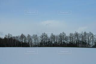 網走の雪景色の写真・画像素材[4047613]